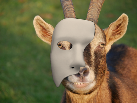 Sparky's Second Act: Once On This Island Goat to Star as New Phantom