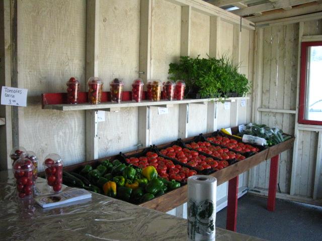 Kiosque jardins st Pascal