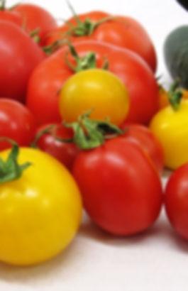 Les tomates des Jardins Kamouraska