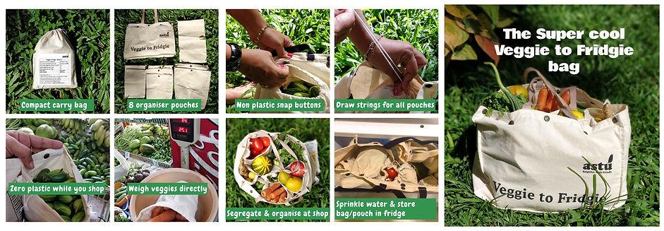 veggie to Fridgie Bag
