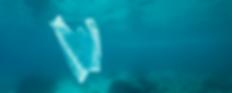 Lf07-JUN-World-Oceans-Day.png