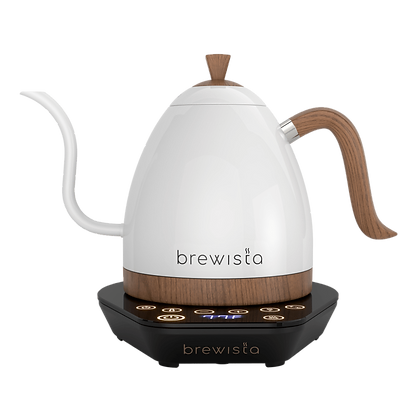 Artisan Electric Gooseneck Kettle 900ml
