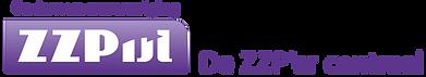Logo van ZZPijl, de netwerkvereniging voor zelfstandig ondernemers in mijn regio