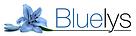 bluelys_gestionnaire_paris.png