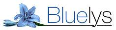 bluelys_gestionnaire_paris.jpg