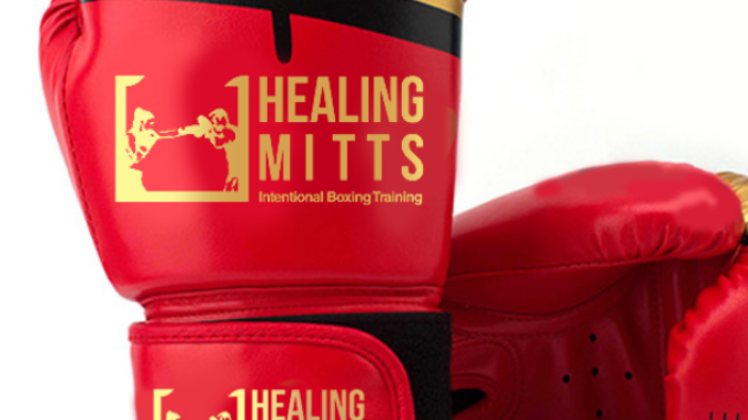 Healing Mitts Boxing Gloves