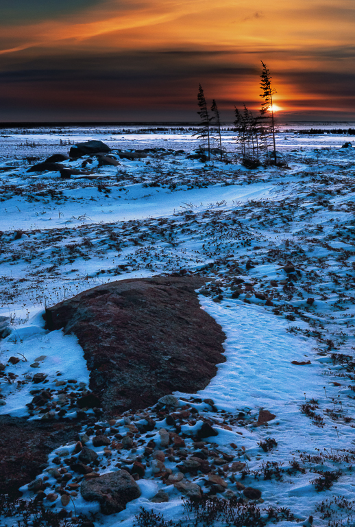 Arctic Evening