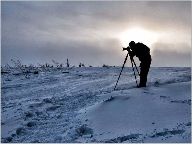 Arctic Photographer