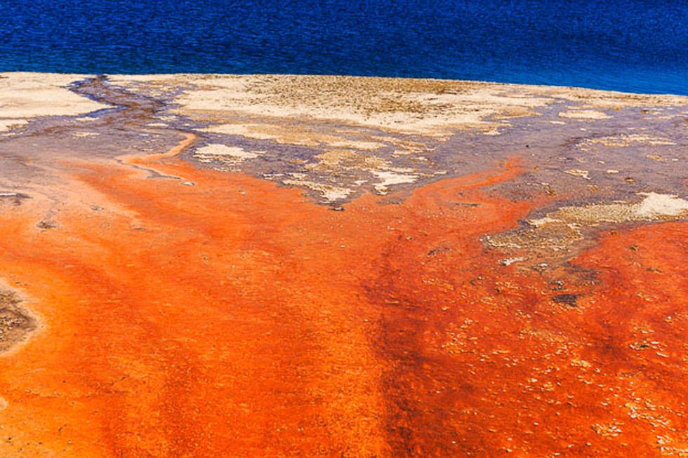 Thermal Pool in Yellowstone N.P.