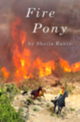 Fire Pony book cover
