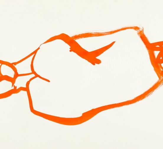 Fetal in Orange