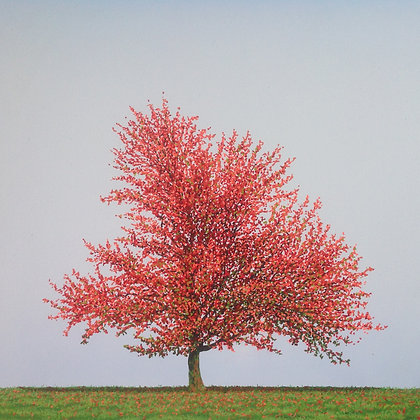 NIGEL WOOD -RED TREE