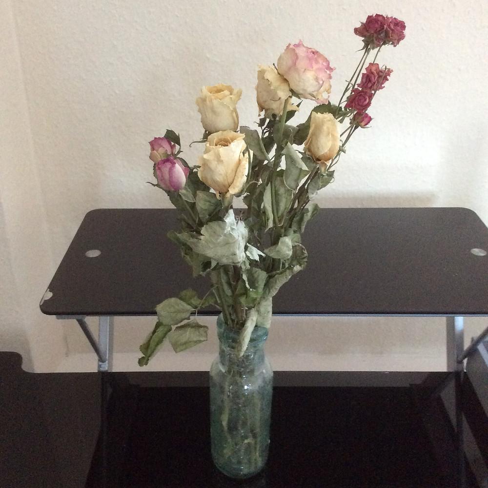 Dead flowers in a vase