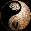 New Moon in Sidereal Gemini: Reconciling Freedom and Limitation