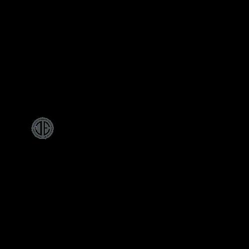 Alexander Team Logo png-4.png