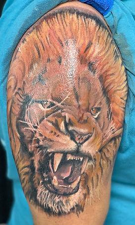 lion tattoo, realism, realistic lion tattoo, tattoo, tattoo shop near me, ocala tattoo shops, tattoo shop, ocala tattoo, gainesville tattoo, summerfield tattoo, belleview tattoo, best tattoo shop, best tattoo artist, gregg allan, tattoo gallery, tattoo galery ocala, ocala florida, florida tattoo shop,