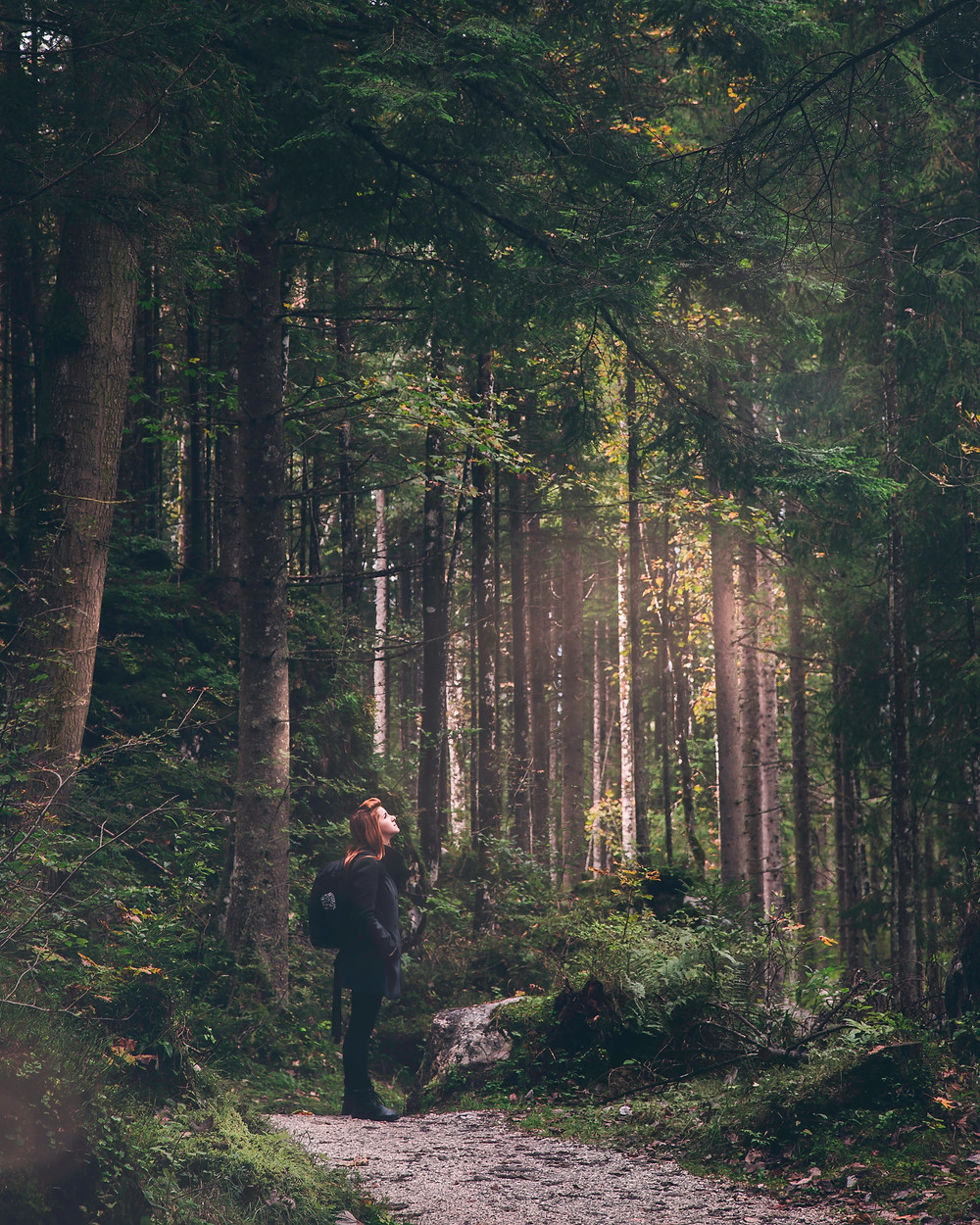 Young redheaded woman standing on a forest path looking in wonder.