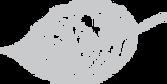 TenderHeart-BeginTheJourney-Leaf-Icon.pn