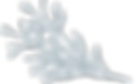 TenderHeart-HelpfulHolistic-3Cypress-Ico