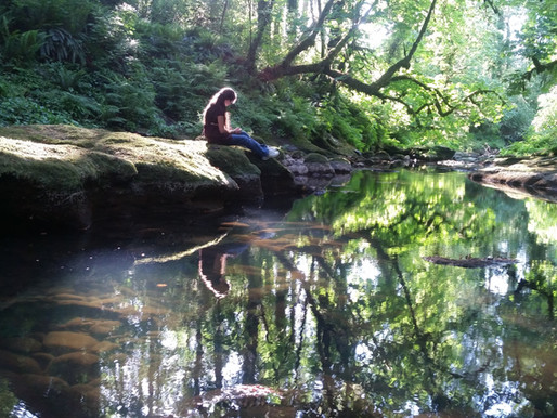 Seeking Sacredness? Forest Bathing Can Help.