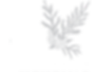 TenderHeart-Logos-Final-Colour-HighRes-J
