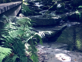 Steps into History & Myth - Part 2 St Nectan's Glen