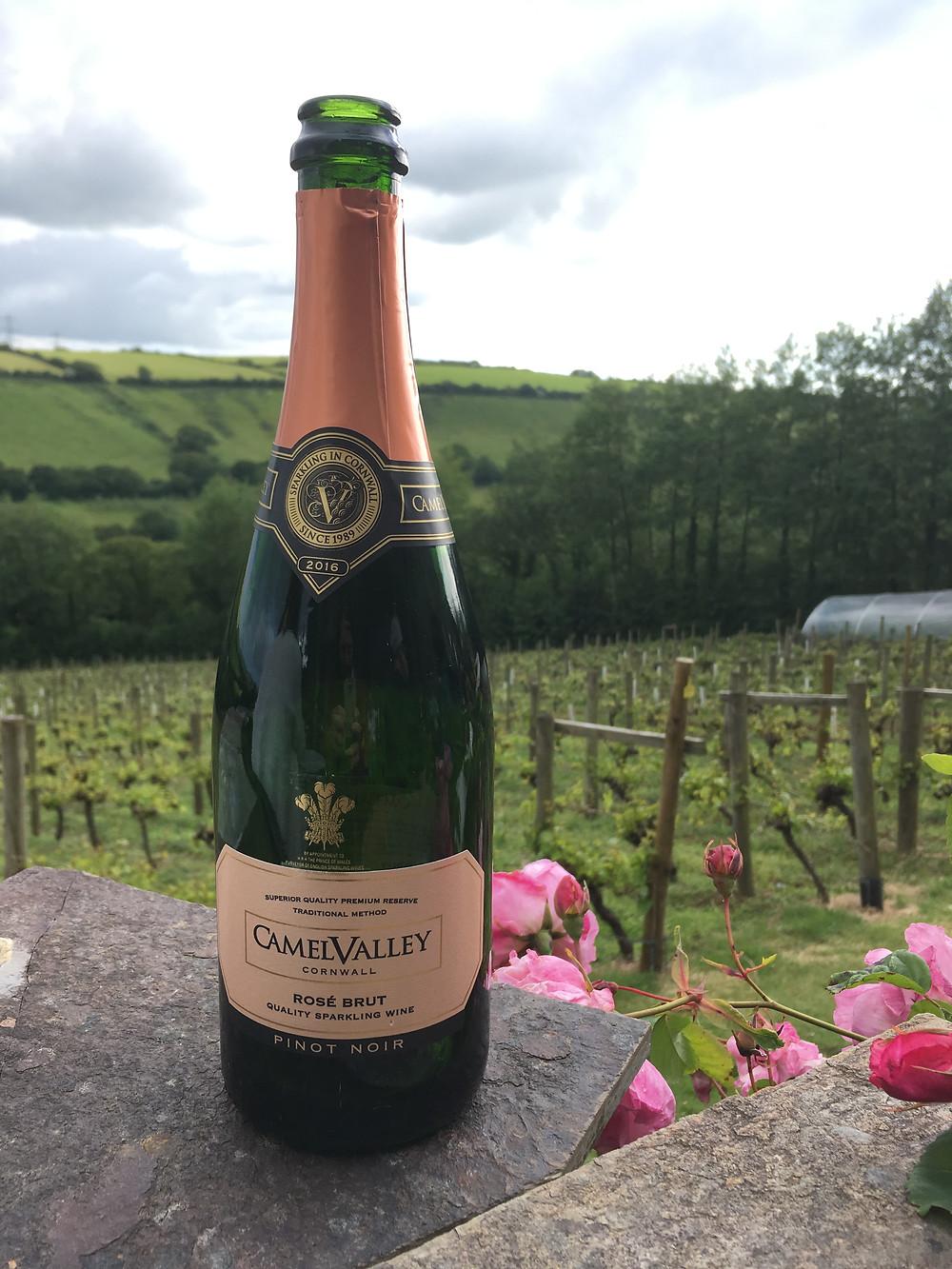 Camel Valley wine on Sun Terrace, Cornwall, Tregolls Farm