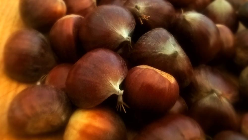 Chestnuts at Tregolls Cornwall