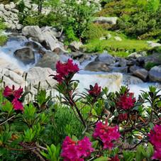 Feriencenter Vulpera, Dein Ferienparadies - Alpenrose Credit: Boom Marketing