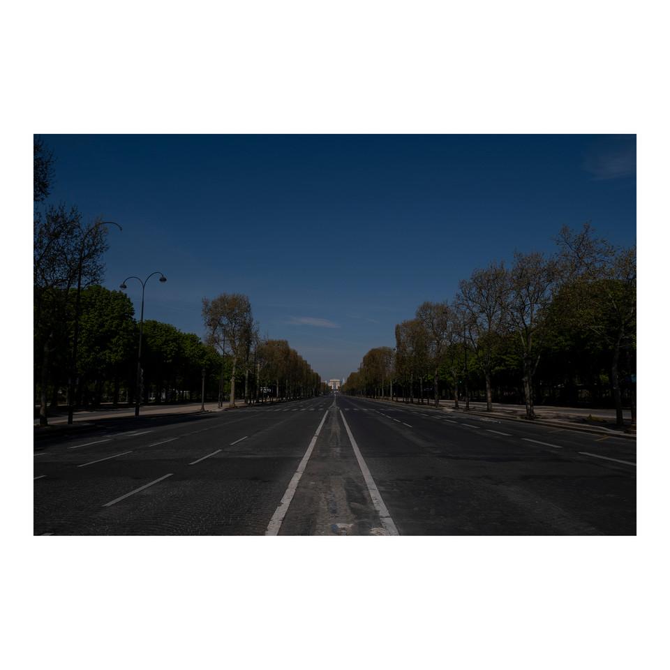 Paris After Humans #20