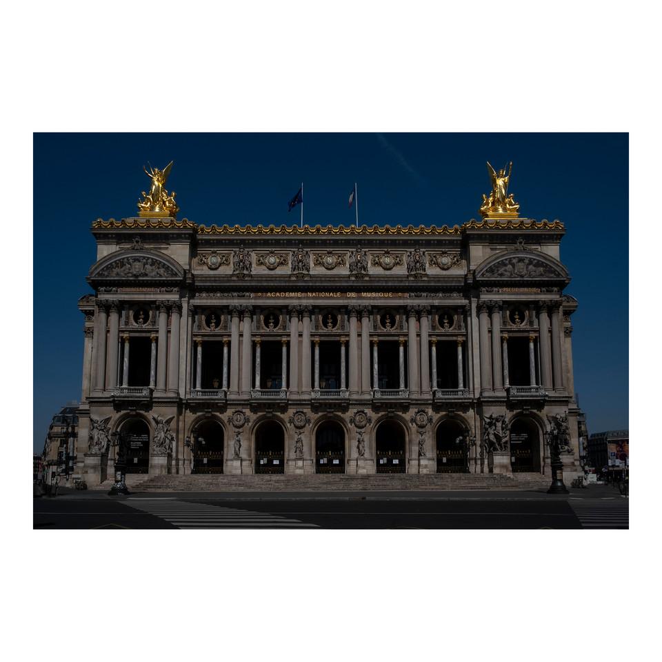 Paris After Humans #31