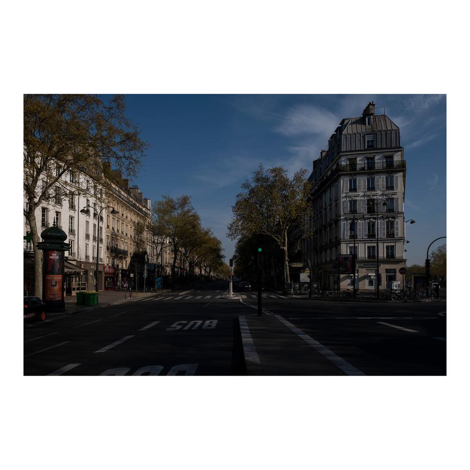 Paris After Humans #5