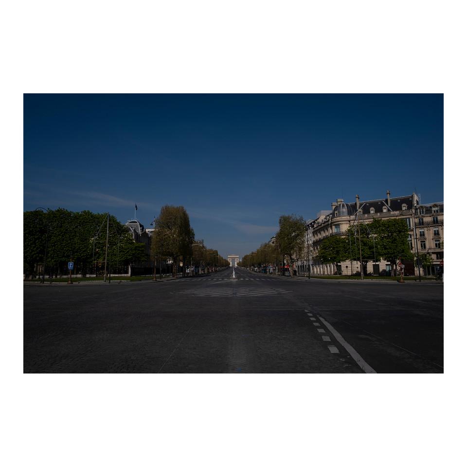 Paris After Humans #24