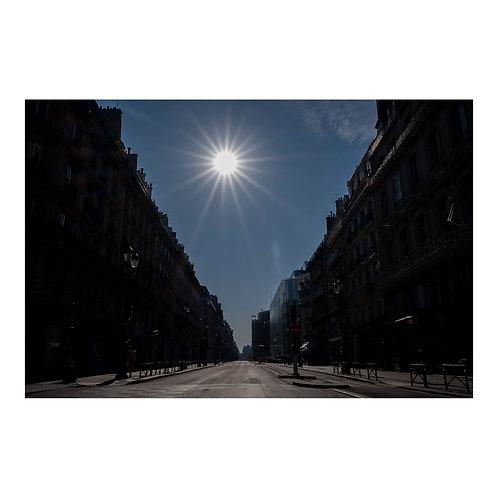 Paris After Humans #7