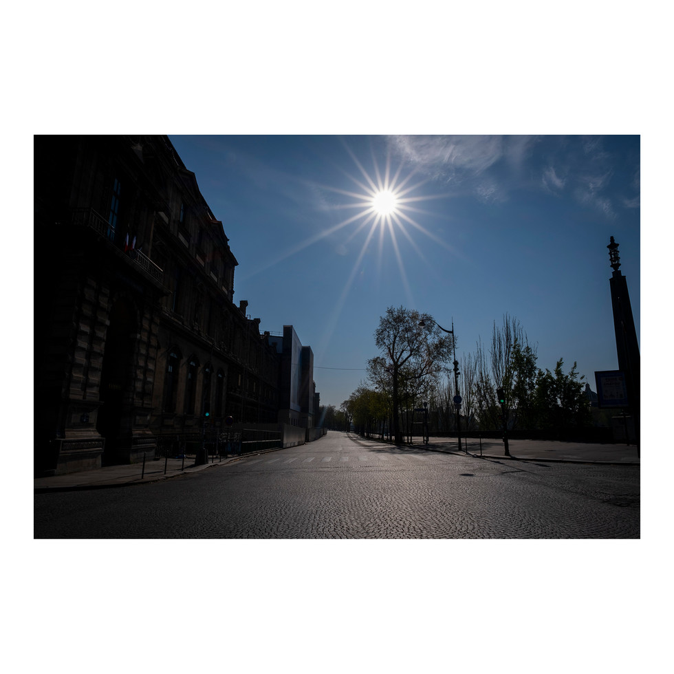 Paris After Humans #13