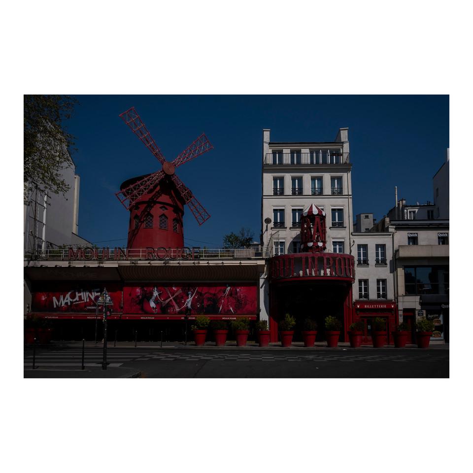 Paris After Humans #32