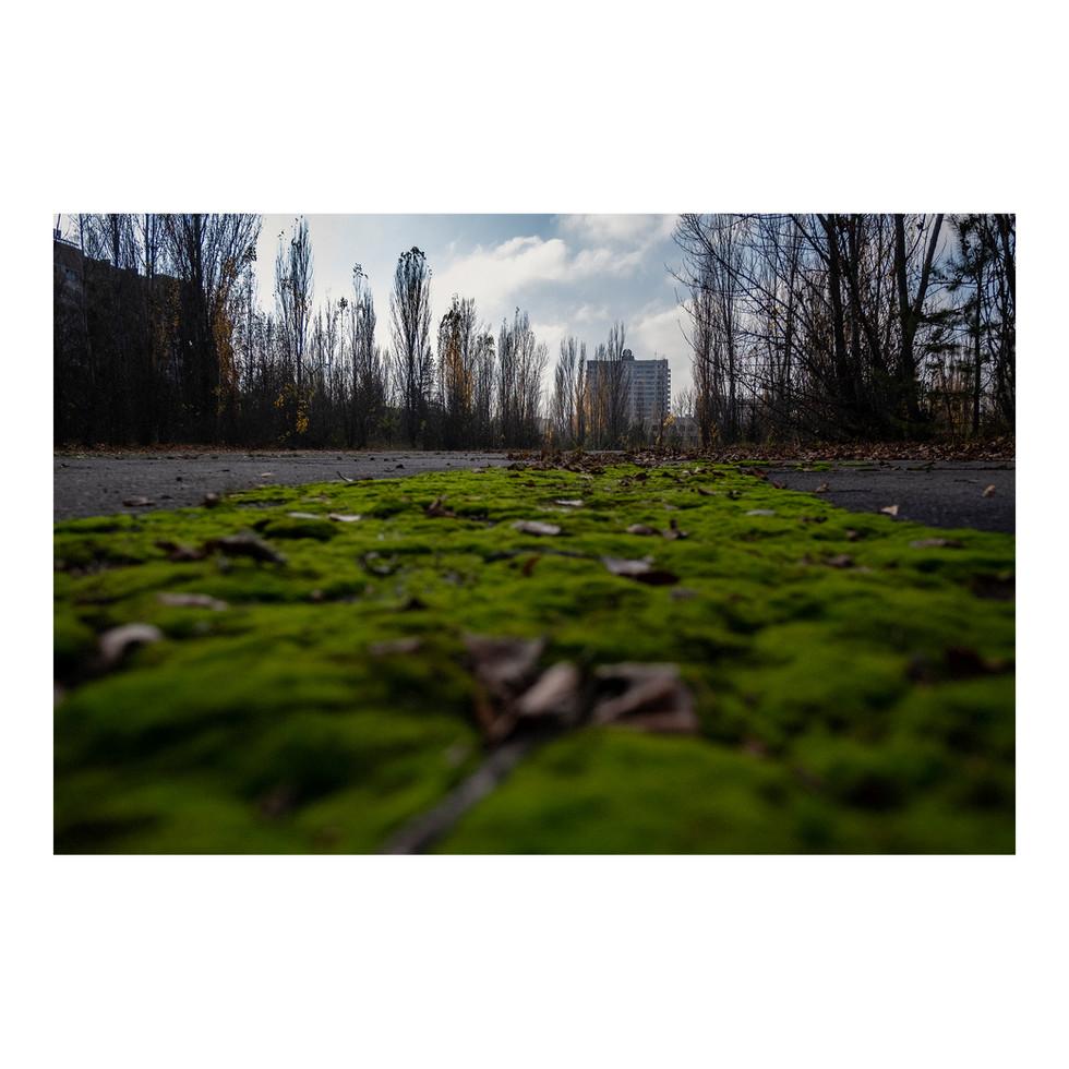 Pripyat. Le silence de la ville était prenant. J'étais étonné d'une chose: je n'ai quasiment pas entendu d'oiseaux. Mon imagination m'a peut-être joué un tour.