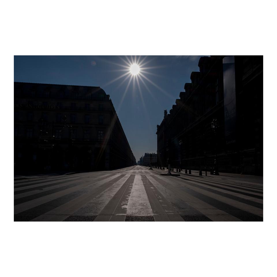 Paris After Humans #9