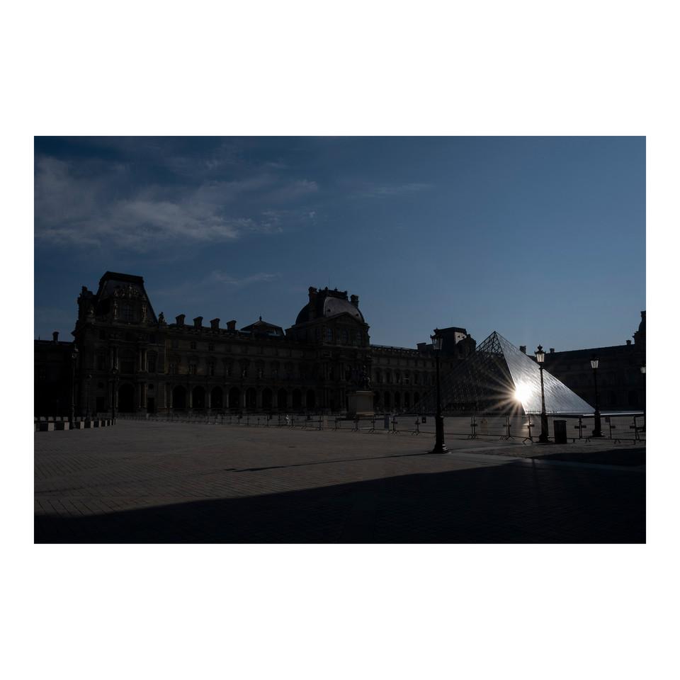 Paris After Humans #12