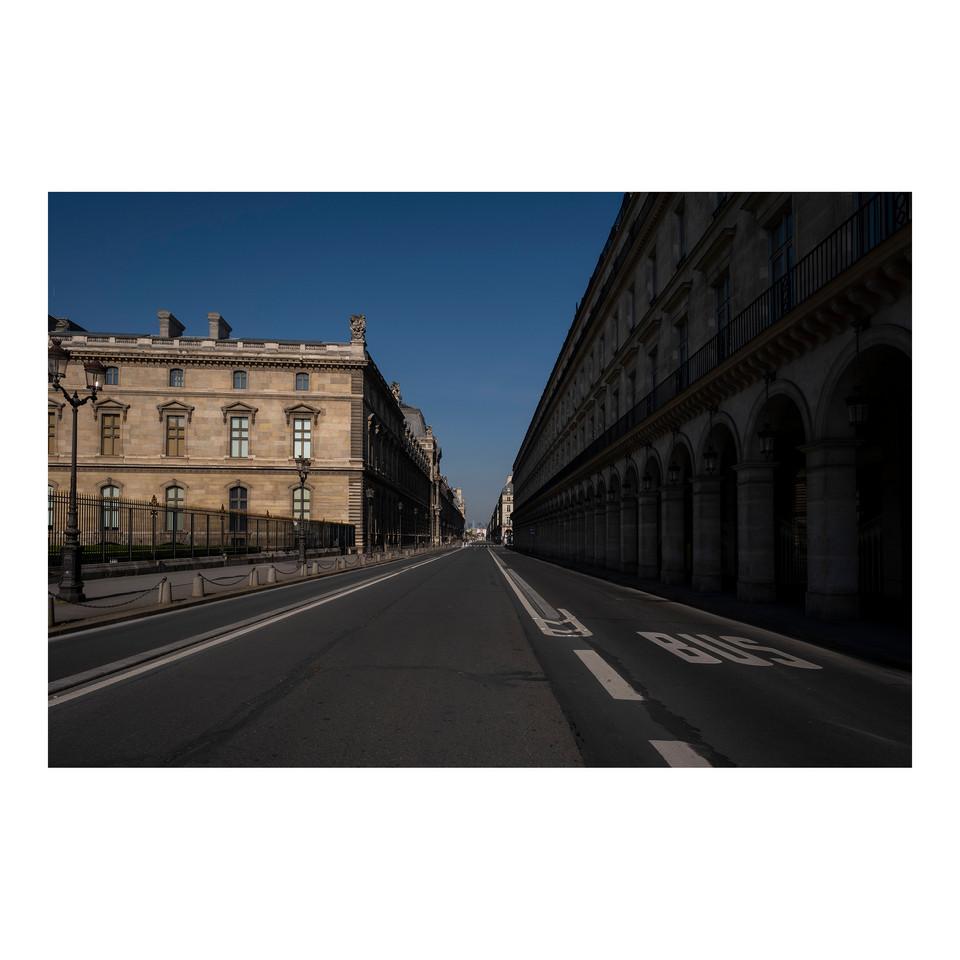 Paris After Humans #8