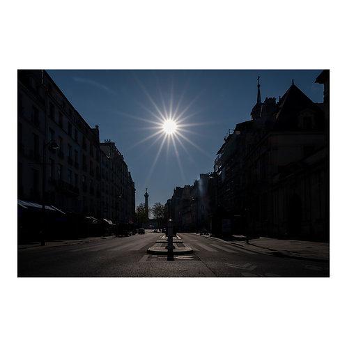 Paris After Humans #6