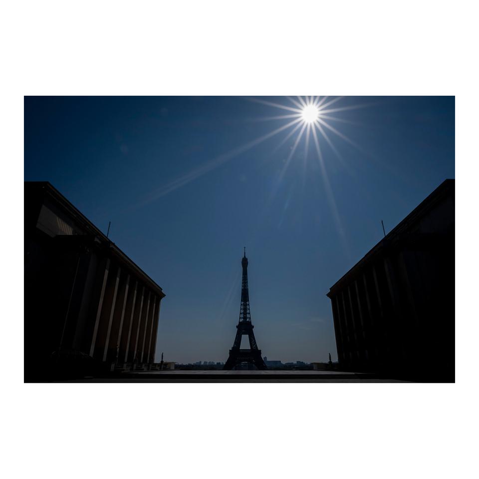 Paris After Humans #29