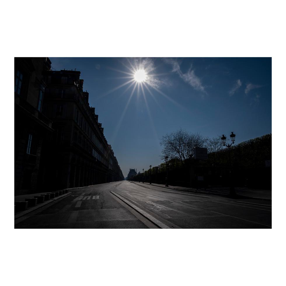 Paris After Humans #16