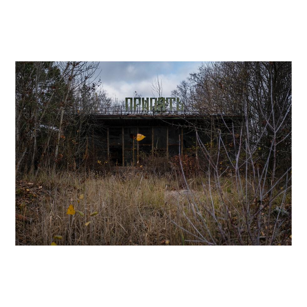 A Pripyat, la végétation a pris le pouvoir sur le béton. Début novembre est probablement le meilleur moment de l'année pour y aller, pour pouvoir lire entre les branches.