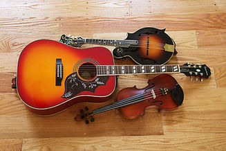 stringed_instruments.jpg