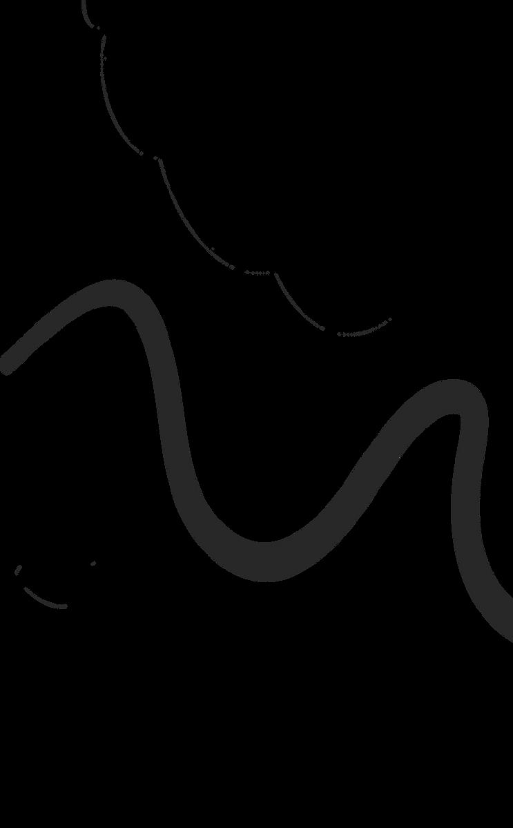programs Large Line Art.png