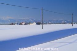 冬晴れのコントラスト 石狩市郊外
