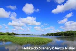 初夏の茨戸川