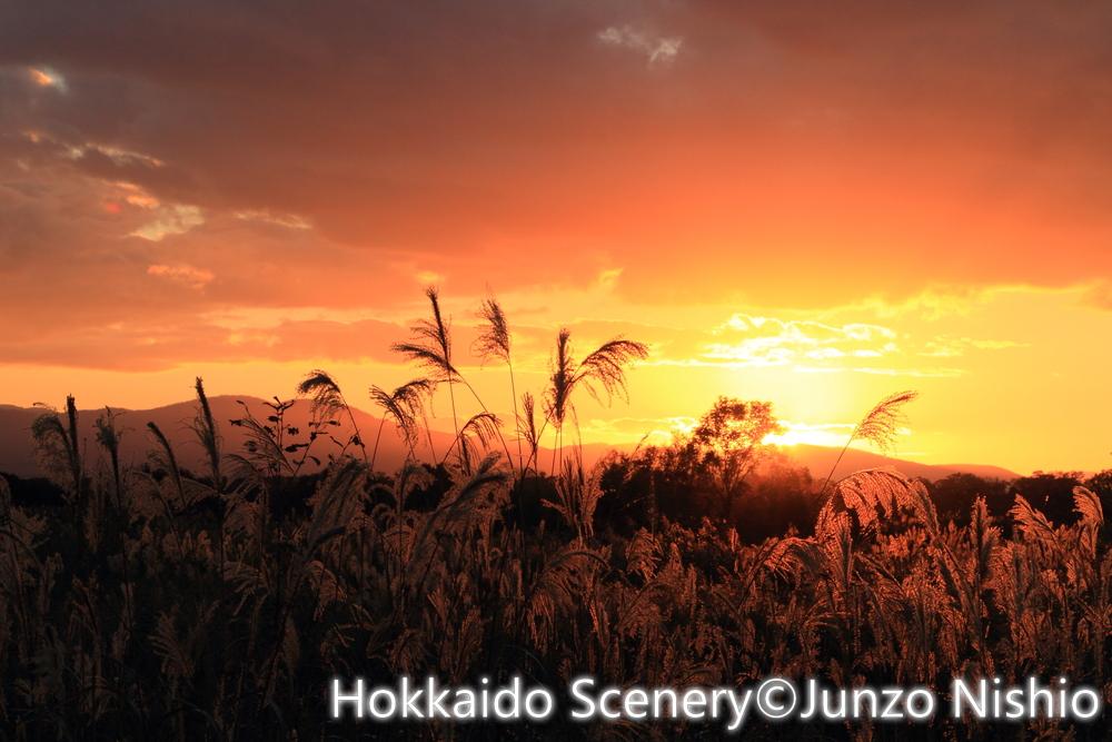 秋の夕日2_石狩市郊外