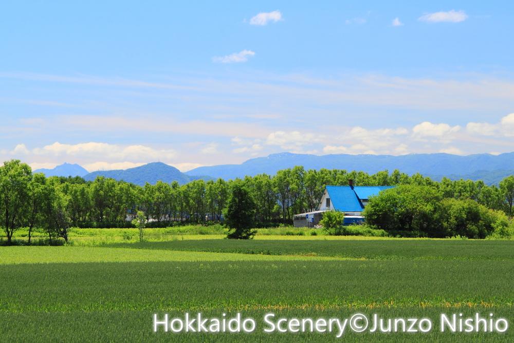 青い屋根の家_石狩市郊外